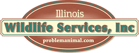 illinois wildlife services inc logo